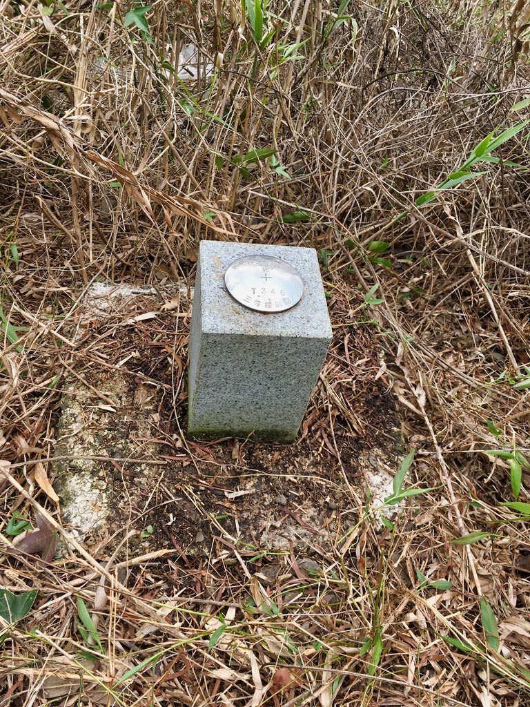 T346 Survey Marker