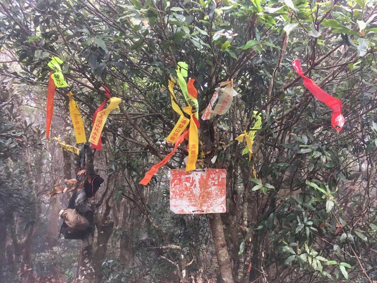 ShiKeJian 石可見山 ribbons on trees and old sign