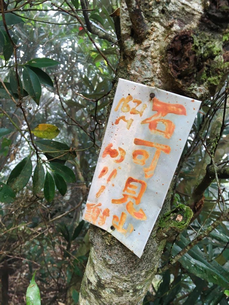 ShiKeJian 石可見山 sign on tree