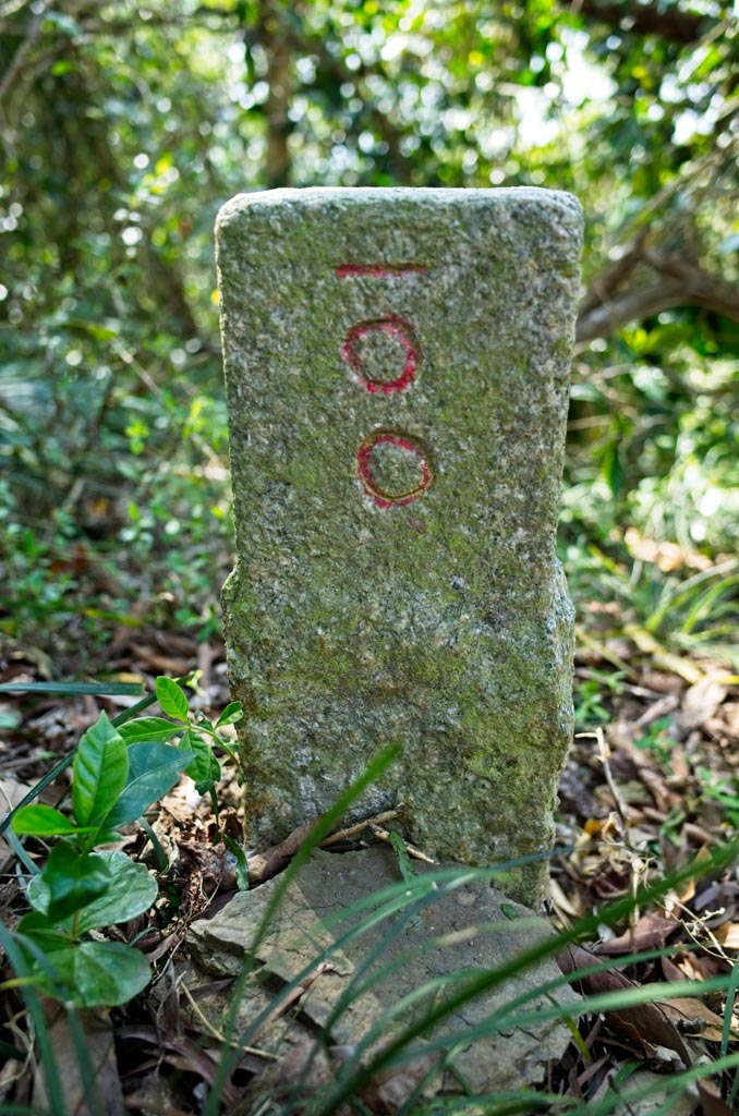 Lion Head Mountain - 獅子頭山 peak marker up close - Number 100