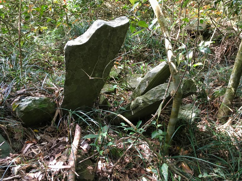 One large stone sticking out of ground at odd angle