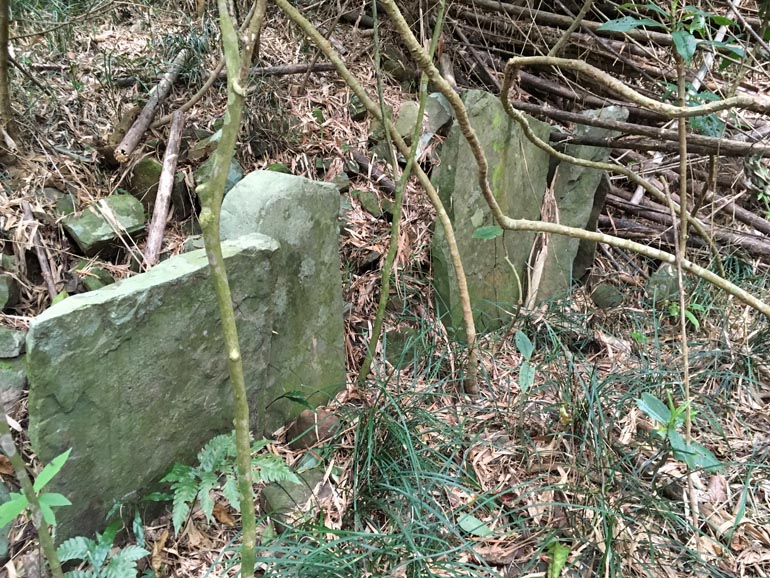 Several thinner stones standing upright