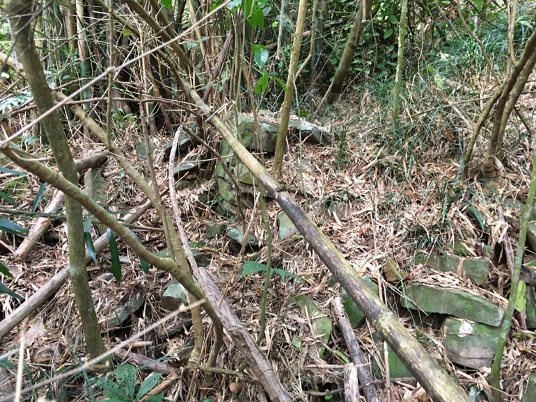 A mess of fallen bamboo and stones lying about