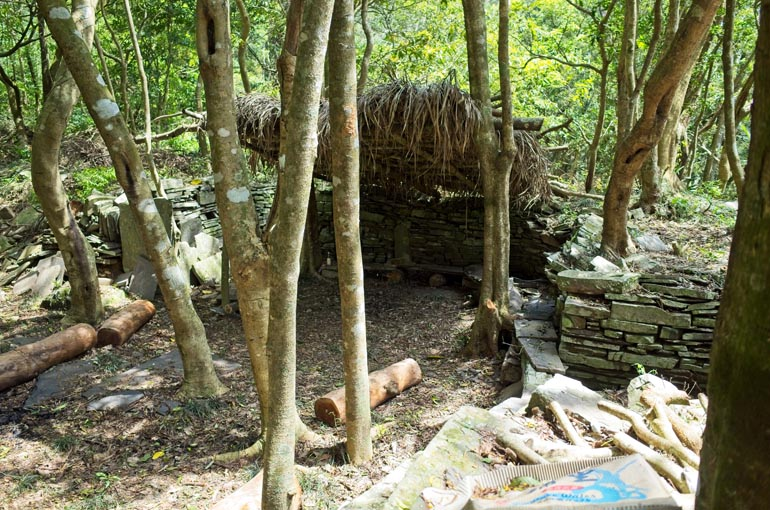 Stone foundation with thatched roof covering half - trees mixed within