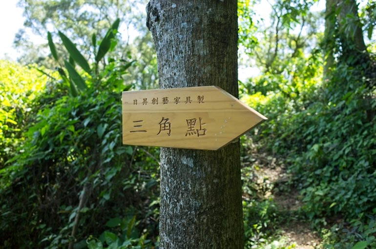 Wooden sign pointing the correct way