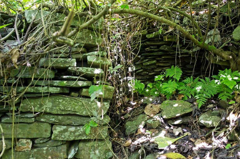Stacked stone foundation with vines and tree branch