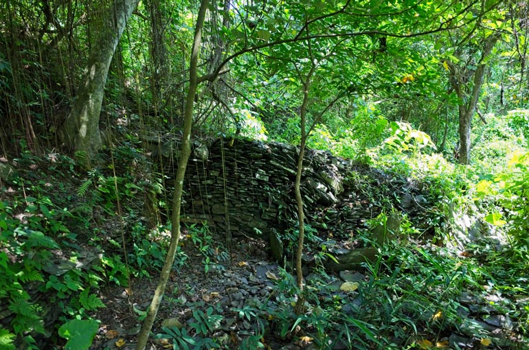 stacked rock wall - trees and overgrowth around