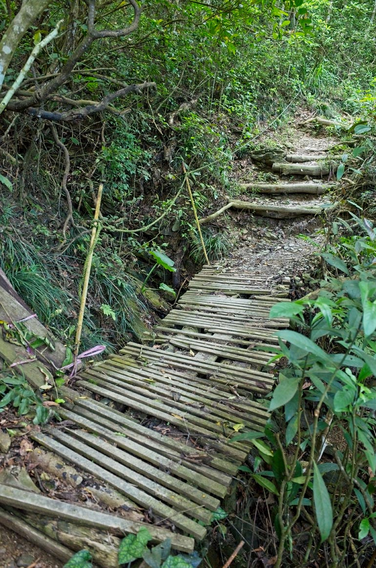 A short, thin wooden plank bridge that looks in questionable shape