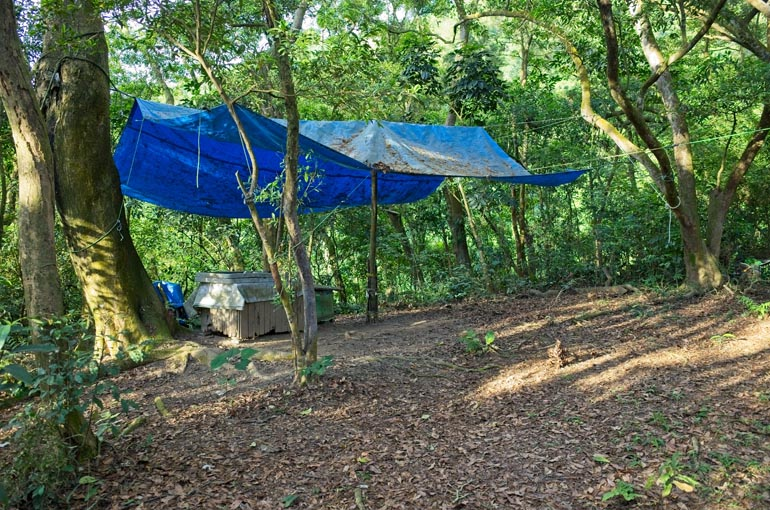 Large blue tarp strung to trees - large tables underneath